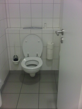 Image result for Germany toilet brush in public bathrooms