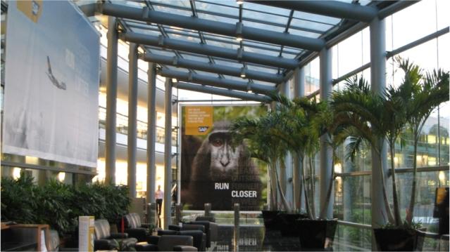 SAP Run campaign