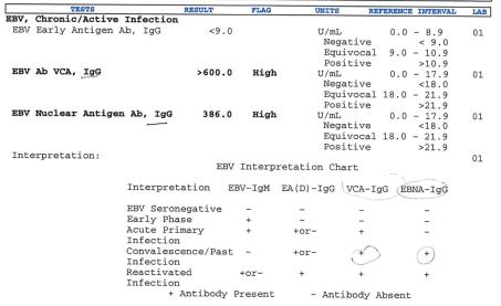 ebv-results