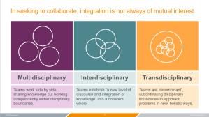collaboration-11